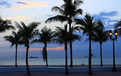 Florida Relocation : Why, Where and How You Should Move