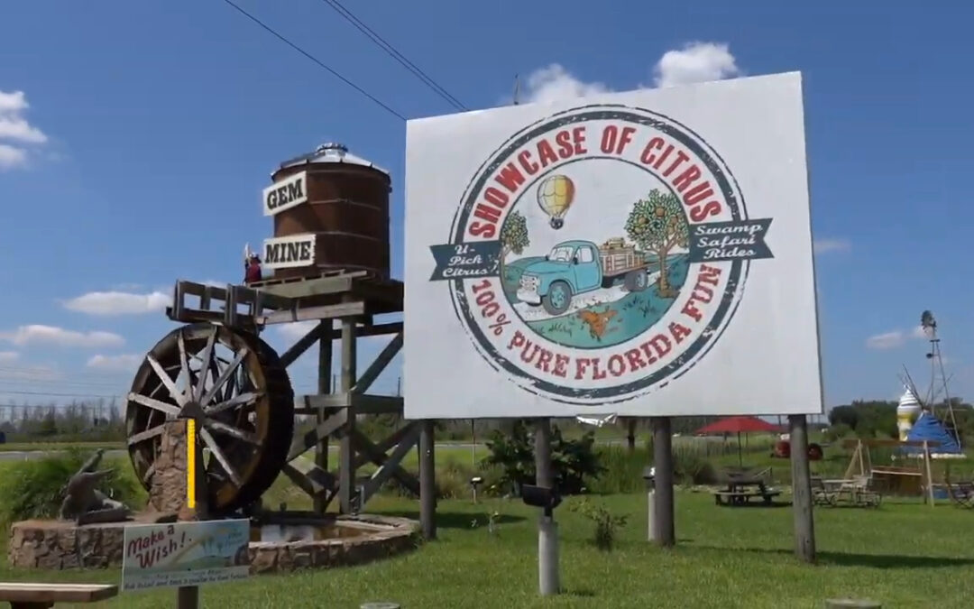 Is Clermont Florida A Good Place To Live?